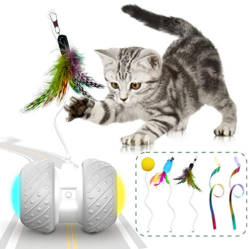 kberho Cat Toys Interactive Cat Toys for Indoor with FeatherBallMouse and 2 Color RibbonsAutomatic Cat Toy with Irregular USB Charging 360 Degree Self Rotating Ball