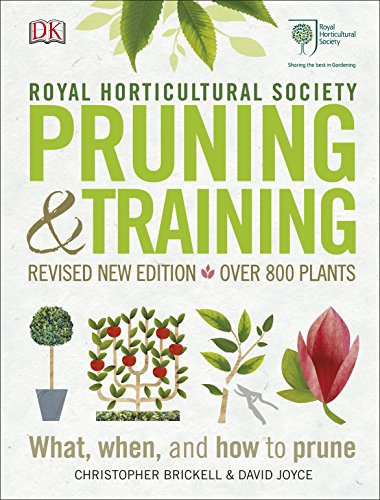 Top 10 pruning and training for 2021