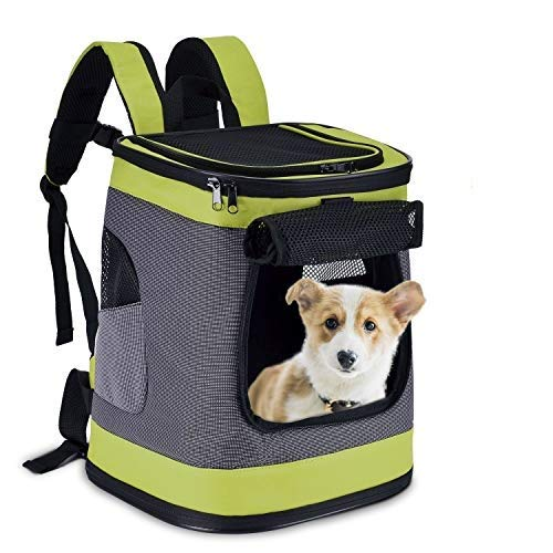 HAPPY HACHI Dog Carrier Backpack Waterproof Puppy Cat Rucksack Pet Soft Sided Padded Travel Bag Airline Approved with Top Open Breathable Mesh and Waist Strap (Green)