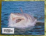 12 photos couleurs (21 cm x 27 cm) de Les dents de la mer 4 : La Revanche (1987),...