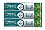 Himalaya Ayurvedic Dental Cream with Neem extract, no fluoride, 100g (3 PACK)