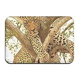AoLismini Alfombra de baño, Leopardo en un árbol en The Sabi Sands Reserve Alfombra de baño de Felpa con Respaldo Antideslizante