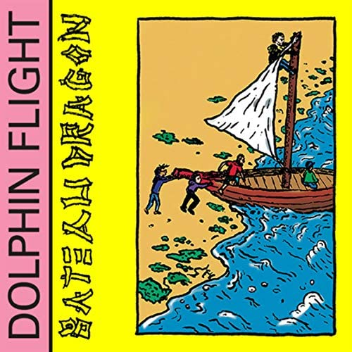 Dolphin Flight