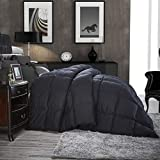 Luxurious All-Season Goose Down Comforter Twin Size Duvet Insert, Classic Black, Premium Baffle Box, 1200 Thread Count 100% Egyptian Cotton Cover, Hypoallergenic, 50 oz Fill Weight (Twin, Black)
