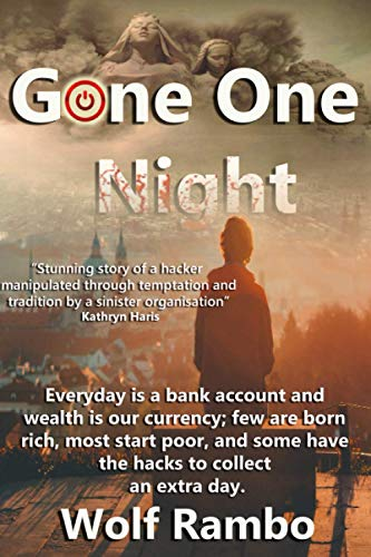 Gone One Night (Cyber Crime, Band 1)