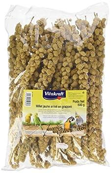 Vitakraft Millet Anisé en Grappe pour Oiseau Jaune 500 g