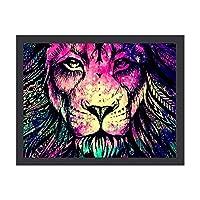 Rainbow Lion Galaxy アートパネル アートポスター 壁画 壁掛け 絵 モダンアート インテリア装飾 壁飾り プリントアート お洒落 新築飾り 30*40cm 雰囲気 癒し 外枠付き
