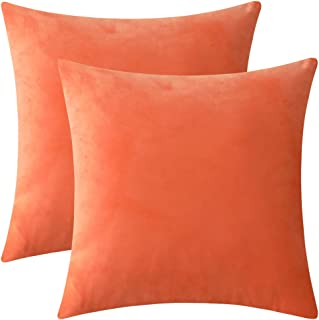 Rythome Set of 2 Kids Comfortable Throw Pillow Cover for Bedding, Decorative Accent Cushion Sham Case for Couch Sofa, Soft Solid Velvet with Zipper Hidden - 12