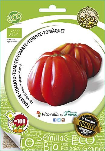 Tomate ecológico ( liguria) - Semillas fitoralia