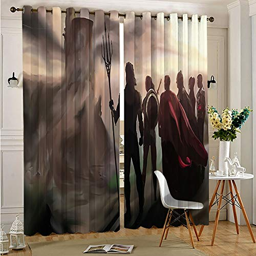 Petpany Justice League Thermal Insulated Noise Reducing and Light Blocking justice league members Blackout Curtains Kids Room Darkenings Darkening Curtains for Living Room 63'x63'