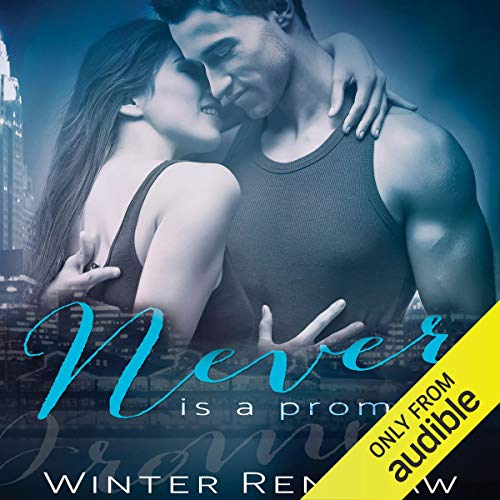 Never Is a Promise audiobook cover art
