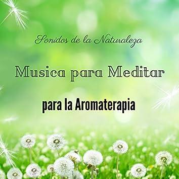 Musica para Meditar y Sonidos de la Naturaleza para la Aromaterapia