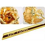Immagine 1 mfb regali di rose real