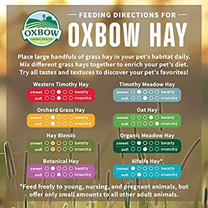 Petlife Oxbow Orchard Grass Hay for Small Pet, 1.13 kg 3