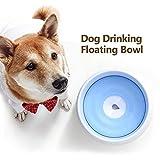 Ciotola Galleggiante per Cane Blusea Cane Ciotola per Acqua a Prova di Spruzzi d Acqua con Disco Galleggiante per Cani Gatti Animali Domestici