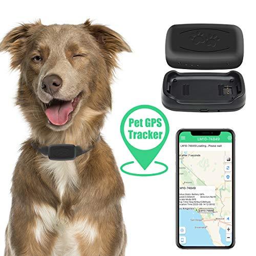 Zebbyee Tractive Localizador GPS, Rastreador de Mascotas GPS, Localizador de Perros y Gatos en Tiempo Real y Monitor de Actividad, Dispositivo de Rastreo de Perros y Gatos con Alcance Ilimitado