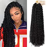 Passion Twist Hair 18 inch Freetress Water...