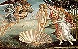 Kunstdruck/Poster: Sandro Botticelli Die Geburt der Venus c