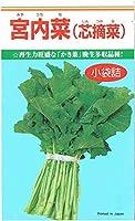 カネコ種苗 かき菜「宮内菜(芯摘菜)」のタネ
