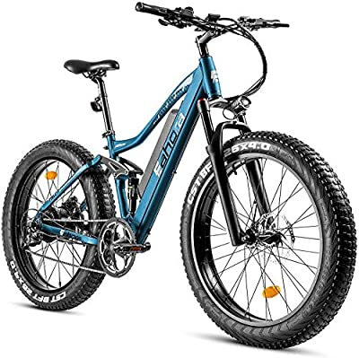 """eAhora AM200 750W 4.0"""" Fat Tire Mountain Electric Bike 48V Urban Electric Bikes for Adults with Hydraulic Brakes, Air Suspension, USB Port Password Display, E-PAS Recharge System, 9-Speed Gears"""