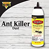 Best Ant Powders - Bonide Products 45502 1Lb Ant Dust Killer, 1 Review