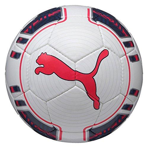 Puma Evo Power 5 Trainer Hs Fußball