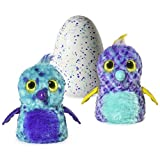Hatchimals Fabula Forest - Hatching Egg with Interactive Puffatoo or Tigrette by Spin Master (Styles and Colors May Vary)
