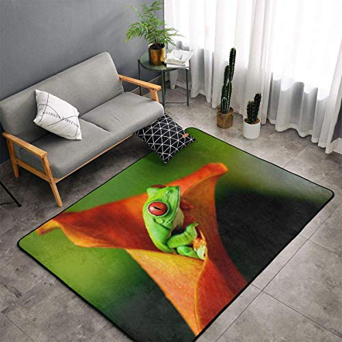 Indoor Modern Soft Floor Area Rugs Fluffy Machine Washable Carpets 60' X 39' Green Frog Suitable for Children Bedroom, Office, Coffee Table, Balcony Home Decor Rugs