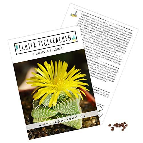 Exotische Kakteen Samen mit hoher Keimrate - Sukkulenten Samen Set für deinen eigenen wunderschön blühenden Kaktus (1x Echter Tigerrachen)