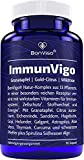 ImmunVigo - Immunsystem unterstützen, Zellen schützen, Energie, Hormone, Psyche* - 13-Pflanzen Komplex mit Granatapfel, Kurkuma, Sanddorn, Spirulina - Vitamin A, B6 und B12 aktiviert, Kupfer, Mangan