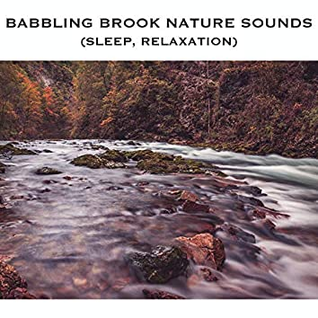 Babbling Brook Nature Sounds (Sleep, Relaxation)
