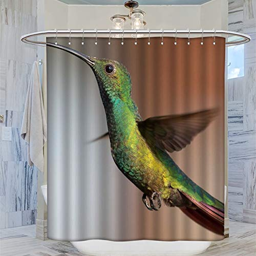Humming Bird Shower Curtains Set for Bathroom 72''x72'', Durable and Washable with 12 Plastic Hooks