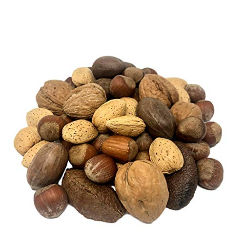 NUTS U.S. – Mixed Nuts In Shell (Almonds, Walnuts, Hazelnuts, Pecans, Brazil Nuts) | No Added Colors and No Artificial Flavors | Fresh Buttery Taste and Raw |Packed In Resealable Bags!!! (2 LBS)