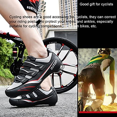 ziitop Ciclismo