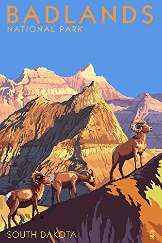 Badlands National Park, South Dakota, Bighorn Sheep 45082 (12x18 Art Print, Wall Decor Travel Poster)