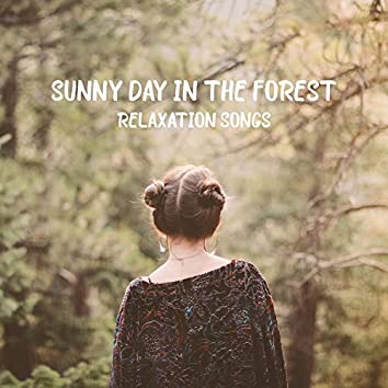 Sunny Day in the Forest Relaxation Songs: 2019 Nature New Age Music Mix, Soothing Sounds of Forest Like Birds, Wind, Animals & Many More