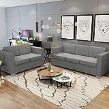 Vislone Sofás Salon Conjunto de Sofás 2 uds Incluye 1 Sofá de 2 Plazas y 1 Sofá de 3 Plazas con Estructura de Madera Patas Cromadas Tapicería de Tela Gris Claro