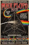 Theissen Pink Floyd Poster Dark Side Tour Wall Art New - Póster enmarcado mate Gift 11 x 17 pulgadas (28 x 43 cm) *IT-00202