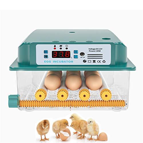 JHKGY Incubadora De Huevos,Nacedora Digital Completamente Automática,con Control Automático De Temperatura,para Huevos Huevo De Pato, Huevo De Ave, Huevo De Pavo Huevos De Ave,12 Egg