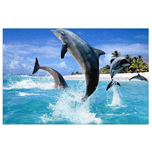 Felpudo de buceo con delfín, felpudo de bienvenida al aire libre, alfombra para entrada antideslizante, alfombra lavable para porche frontal, cocina, entrada, 40 x 60 cm