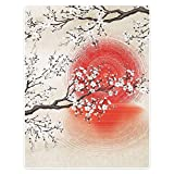HommomH 60' x 80' Blanket Comfort Warmth Soft Cozy Air Conditioning Easy Care Machine Wash Sakura Branches Japanese Sun and Reflection