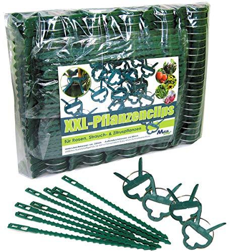 MGS SHOP Pflanzenclips 180 Stück stabile Clips Pflanzenklammern für kleine & große Triebe Spaliere Rosenbögen Rankhilfen (180er-Set XXL+)