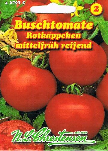 Buschtomate Rotkäppchen Tomate Tomaten