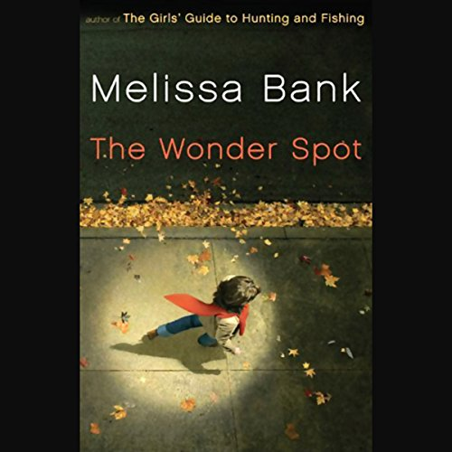 The Wonder Spot audiobook cover art