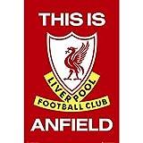 Offizielles Liverpool FC t.i.a. Poster (61x 91cm)