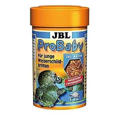 JBL ProBaby - Turtle Baby Food from JBL