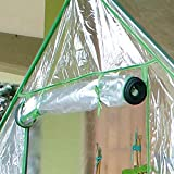 Zoom IMG-1 rama serra da giardino a