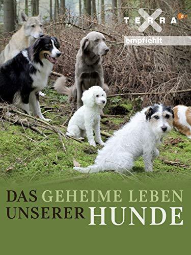 Das geheime Leben unserer Hunde