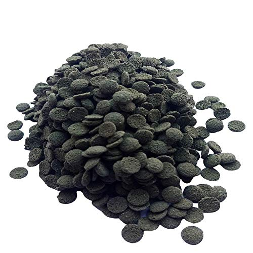 HALF PRICE TROPICAL MINI GREEN SPIRULINA WAFERS Ideal Food For Tropical Fish, Loach, Catfish , Bottom Feeders