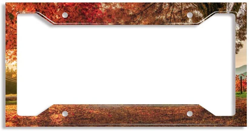 FLLURM Discount New Shipping Free Shipping mail order Aluminum License Plate Bright Autumn Frame